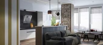 Дизайн квартиры студии для холостяка