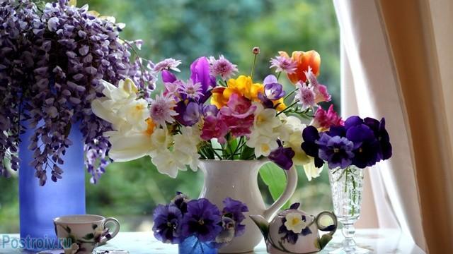 Цветы на подоконнике - Фото 18