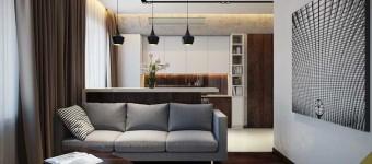 Красивый дизайн гостиной-кухни в коричневых цветах. Фото