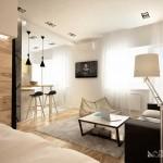 Зона гостиной-кухни в 1-комнатной квартире. Фото