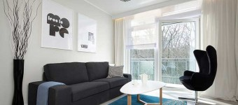 Гостиная в стиле функционализм. Черный, белый и бирюзовый цвета. Фото