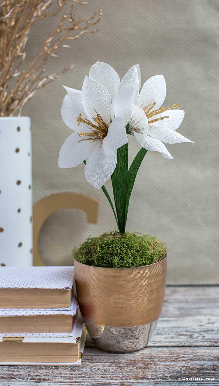 cvety_iz_bumagi_foto7