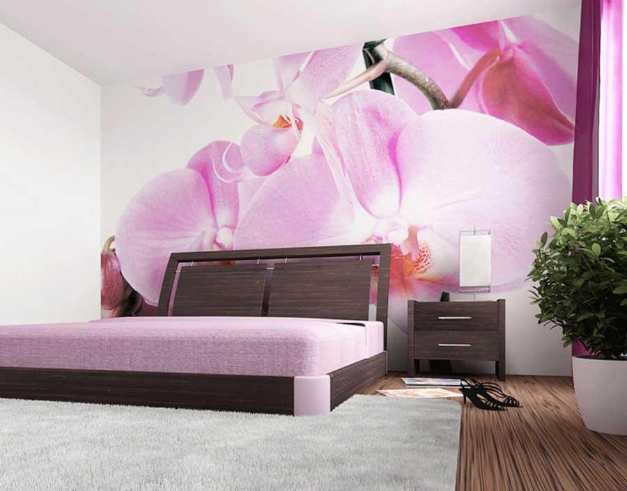orhidea_vspalne9