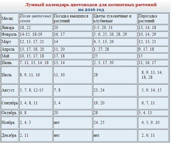 Лунный календарь для пересадки цветов