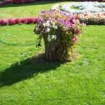 Уличные вазоны для цветов своими руками фото, схемы, мастер-класс