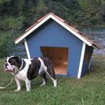 Как-сделать-будку-для-собаки-размеры-чертеж-фото