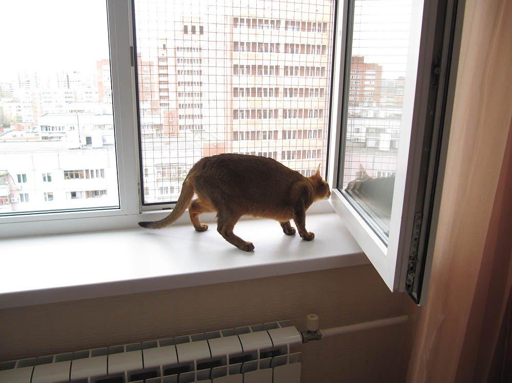 Сетка для окна своими руками фото 641