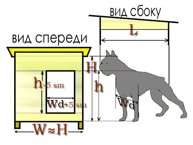 budka9