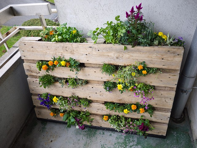 Ящики для цветов из поддонов своими руками 86