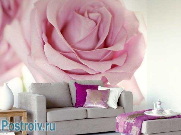 Фотообои с бутоном розы. Фото