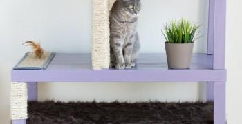 Домик для кошки своими руками. (150 пошаговых фото)