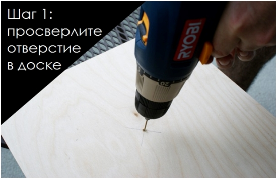 kogtetochka-2