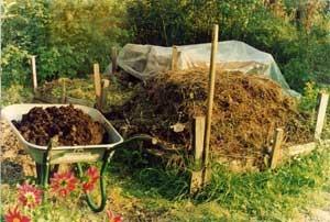 kompost-300x202