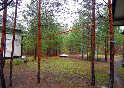 Удаление деревьев с участка 6