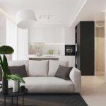 Гостиная совмещенная с кухней в однокомнатной квартире