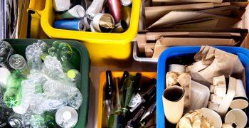 Сортируйте мусор вместе с ребенком. Экология для детей