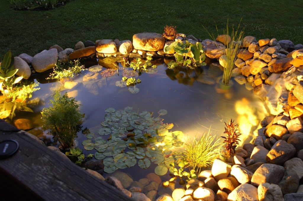 Освещение маленького пруда