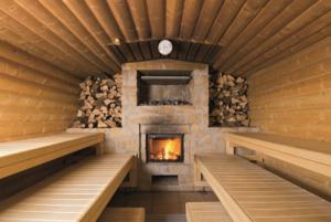 Дровяная печь – правильное обустройство бани