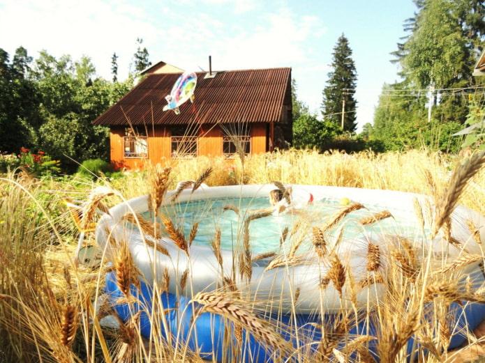 Бассейн в полевых условиях